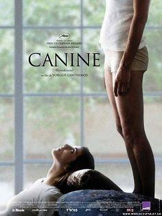 """""""Un perro es como un trozo de arcilla y nuestro trabajo es moldearla""""  Esta asertiva frase proporciona en un sentido amplio, una dosis de significado y claridad en cuanto a fondo y forma, de esta película que se percibe a simple instancia bizarra y desigual. El director nos provee de esta única metáfora para arrogarnos en el camino del entendimiento, específicamente, el entendimiento justificable de su película. Kinodontas, es una película griega dirigida por  Giorgos Lanthimos..."""