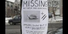 Missing pet turtle sign (jessicatylertumblr via Tumblr)