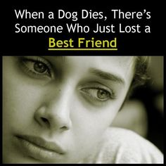 Pet Sympathy Messages: Condolences for Loss of Dogs, Cats, and Other Pets - I never know what to write! Sympathy Messages, Pet Sympathy Cards, Controlling People, Misophonia, Loss Of Dog, Pet Loss, Psychological Effects, Feeling Nothing, A Course In Miracles