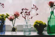 flowers on a windowsill