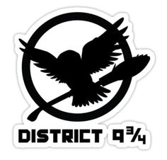 The perfect combination of Harry Potter and Hunger Games.