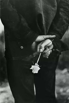 Ralph Gibson … Hand with Rose, from San Francisco … 1969 …