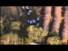 Texas High Speed Police Chase Black SUV - The Cops Pass The Suspect (KTRK)
