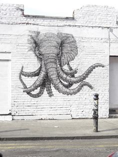 Elephant octopus graffiti in a white wall | Street Art