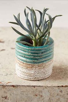 Casual Seance Handmade Glazed Ceramic Planter - Urban Outfitters