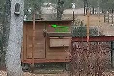 Picture of Chicken Coop Door Status LED Pictures Of Chicken Coops, Automatic Chicken Coop Door, Small Doors, Outside World, Led, House, Projects, Home, Homes