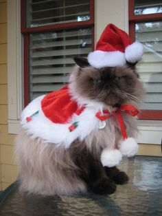 Suddenly all I want for Christmas is for Santa to not claw my eyes out.