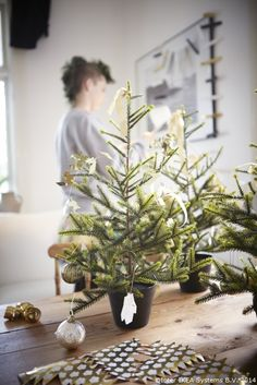 Dacă nu ai loc pentru un brad mare în apartament poți împodobi unul mai mic, într-un ghiveci.  www.IKEA.ro/brad_FEJKA_ghiveci