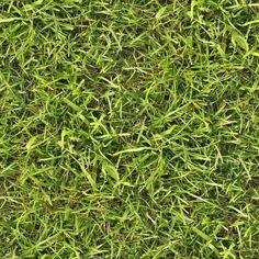Seamless grass texture by hhh316.deviantart.com on @deviantART