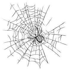 Toile d'araignée, Araignée, Halloween, Dessin, isolé Illustration vectorielle libre de droits