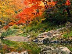 嵐山 紅葉 - Google 検索