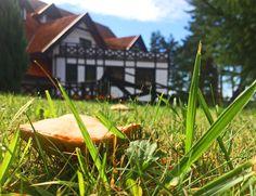 Summer in the Hotel WARMIA PARK Poland Pluski near Olsztyn, Warmia and Masuria