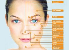 Reflexology: Chinese medicine Myth or Magic. face reading for your health Health Tips, Health And Wellness, Health Fitness, Ayurveda, Reflexology Massage, Reflexology Points, Acupuncture Points, Thyroid Diet, Chinese Medicine
