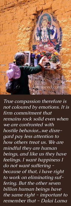 Dalai Lama Buddhist Zen quotes by lotusseed.com.au