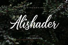 Alishader font by Typia Nesia  http://www.fontriver.com/font/alishader/  #calligraphy #fonts #typography #calligraphic #type #lettering #ttf #script #font #typeface #design #webdesign #artwork