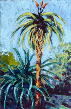 Aloe Thraskii I. Painting by Karin Shelton. Tequila Agave, Downtown Santa Barbara, Aloe, Succulents, Paintings, Garden, Prints, Garten, Paint
