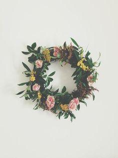 flower, photography, leaf,