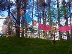 Fairy Hill - Kagyu Samye Ling Scotland