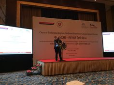 Česko - čínské fórum v Chéngdū... Shangri La Hotel, Great Hotel, Chengdu, Four Square, Blog, Travel, Hotels, Voyage, Trips