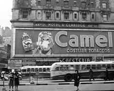 Camel Cigarettes Billboard Sign Reprint 8x10 Reprint Of Old Photo
