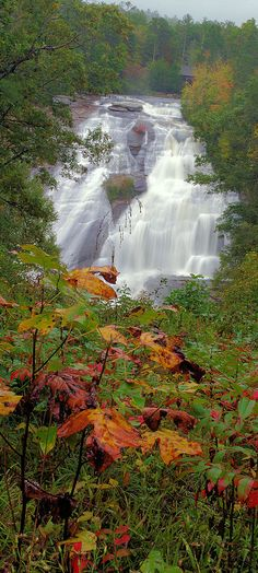 High Falls with early Fall Color in DuPont State Forest near Asheville NC