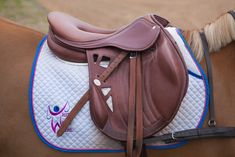 Saddle of choice if I was an eventer! Very different but great air flow!