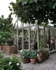 There is no more hurdle to know how to do greenhouse gardening? Greenhouse gardening is only possible in the best climatic conditions and weather variables. Indoor Greenhouse, Backyard Greenhouse, Small Greenhouse, Greenhouse Ideas, Underground Greenhouse, Homemade Greenhouse, Portable Greenhouse, Garden Cottage, Home And Garden