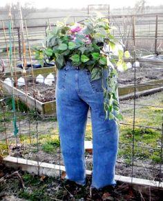 macetas jeans vaqueros tejanos muy ingenioso