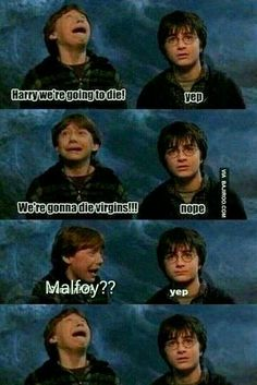 New Memes Funny Faces Facial Expressions Harry Potter Ideas Draco Harry Potter, Harry Potter Tumblr, Harry Potter Mems, Theme Harry Potter, Harry Potter Pictures, Harry Potter Characters, Drarry, Memes Humor, Funny Humor