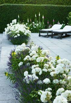4 Playful Hacks: Vegetable Garden Flowers How To Build backyard vegetable garden thoughts.Backyard Vegetable Garden Home. Flower Garden Design, Vegetable Garden Design, Vegetable Gardening, Hydroponic Gardening, Container Gardening, Back Gardens, Outdoor Gardens, Amazing Gardens, Beautiful Gardens
