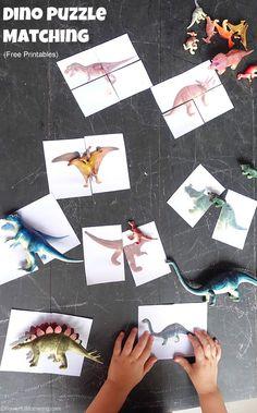 Dinosaur Matching Puzzle (Free Printable) - Eventueel n. bezoek aan Dino's in the Zoo - Burgers' Zoo Arnhem Dinosaur Theme Preschool, Dinosaur Puzzles, Dinosaur Activities, Dinosaur Crafts, Preschool Themes, Dinosaur Birthday Party, Toddler Activities, Preschool Activities, Dinosaur Dinosaur