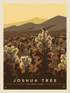 Anderson Design Group, Kenneth Crane, and a New Approach to National Park Poster Art National Park Posters, Joshua Tree National Park, Gig Poster, Document Iconographique, Travel Photographie, Whatever Forever, American National Parks, Flora Und Fauna, Guache