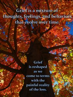 Grief is a mixture of thoughts, feelings, and behaviors that evolve over time.