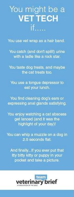 Its been a few years since I was a vet tech, but I have been guilty of every single one of these. LOL