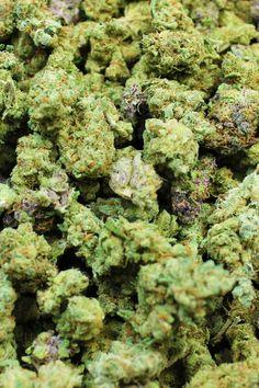 Cannabis seeds for sale in 2018 - weed seeds for sale Cannabis Seeds For Sale, Cannabis Shop, Weed Seeds, Buy Weed Online, Smoking Weed, Herbalism, Herbs, Men Stuff, Ganja
