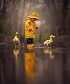 Post with 1904 votes and 96265 views. Tagged with cute, nature, amazing, beautiful, rain; Enjoying rainy day together