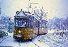 Rotterdam, Matarazzo, Rail Europe, Bus Coach, Light Rail, Public Transport, Winter Wonderland, Netherlands, Transportation