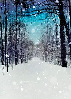 Bleu turquoise d'impression, photographie d'hiver, blanc neige, forêt, décor de mur, moderne, rustique, Snowhere sur Etsy, $17.02 CAD