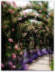 Blenheim Palace gardens, Oxfordshire England.