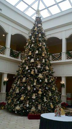 Founders Inn 2012 Tree