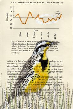 Meadowlark - Causes. Collage by Paula Swisher. Interesting article about her here -  http://numerocinqmagazine.com/2011/03/02/the-quirky-bird-art-of-paula-swisher-by-anna-maria-johnson/