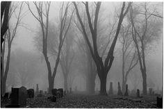 Foggy Graveyard by BlackHive on DeviantArt