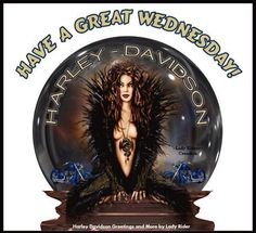Harley Davidson Harley Davidson Seats, Harley Davidson Art, Harley Davidson T Shirts, Harley Davidson Motorcycles, Motorcycle Art, Bike Art, Motorcycle Girls, Biker Chick, Funny