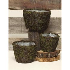 Moss Twig Baskets   ARtificial Silk Flower Wholesaler   Afloral.com
