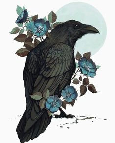 Rabe - tattoo - Informations About Rabe - tattoo - Pin You can easily us Crow Art, Raven Art, Bird Art, Art And Illustration, Illustrations, Vintage Bird Illustration, Illustration Animals, Fantasy Kunst, Fantasy Art
