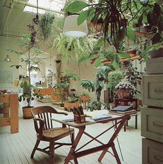 One day I will have a studio like this and plants as friends.