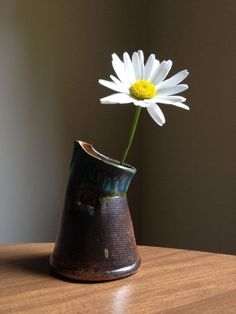 As fresh as a daisy Still Life Photography, Fine Art Photography, Flowers Nature, Beautiful Flowers, Flower Vases, Flower Art, Dove Pictures, Driving Miss Daisy, Daisy Love