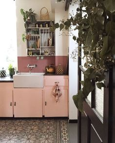 I like the idea of plants that drape in the kitchen. Not a fan of open cupboards though, or these colors.