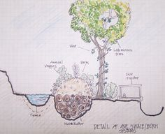 Hugelswale 640x522 Connect Africa Hub   A Permaculture Design
