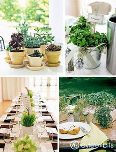 Indoor plants arrangement ideas best about potted plant centerpieces on arrangements large outdoor . Recycled Wedding Decorations, Reception Decorations, Wedding Centerpieces, Table Decorations, Indoor Plant Pots, Potted Plants, Potted Plant Centerpieces, Hummingbird House, Reception Table
